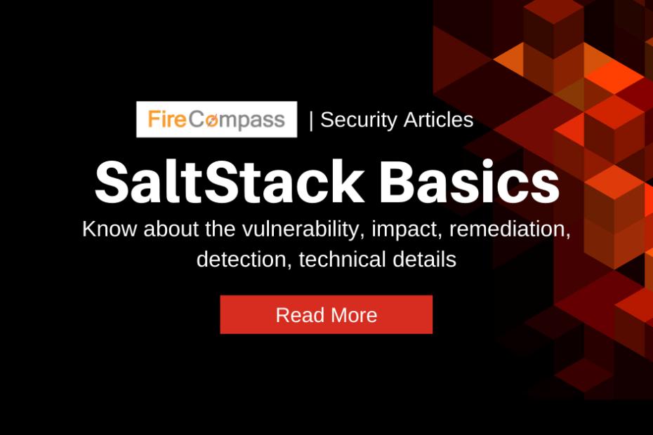 Learn About Saltstake Vulnerability