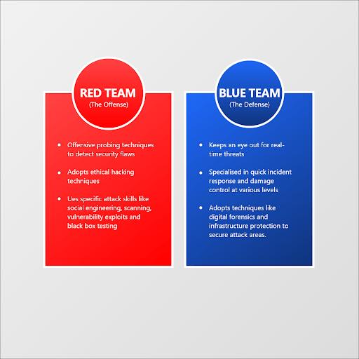 red team blue team